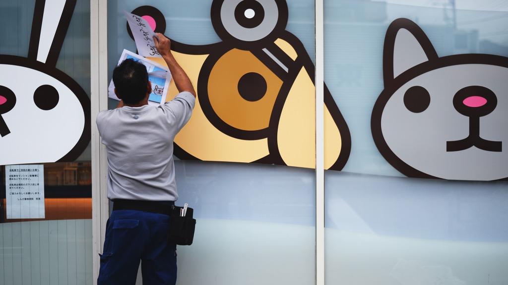 施工例|しんか動物病院様 窓装飾作業中
